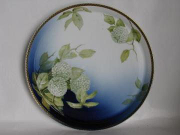 hydrangeas or snowball flowers, hand-painted vintage Bavaria china tray