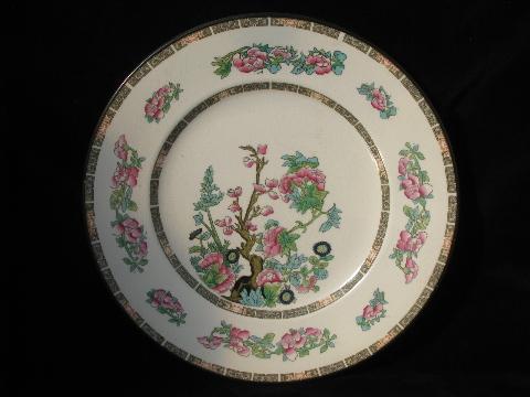 Large Old India Tree Pattern English China Plates Multi