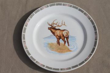 lone stag elk antique china plate, early 1900s vintage Illinois china