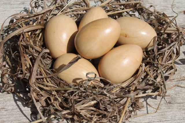 natural wood eggs, life size chicken egg for nest box / primitive country decor