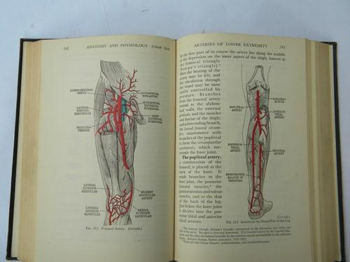 old 1930s medical anatomy textbook w/ color illustrations and engravings