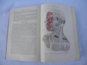 old 50s vintage medical book Gray's Anatomy Human Body color engravings