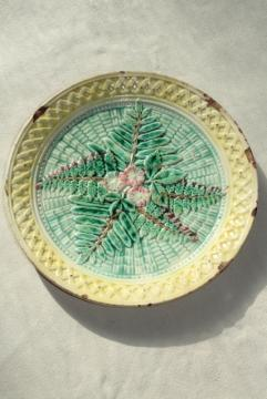 old antique majolica plate, ferns & flowers unknown maker faience pottery unmarked