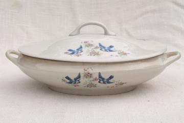 old antique tureen, bluebird china oval covered bowl, early 1900s vintage