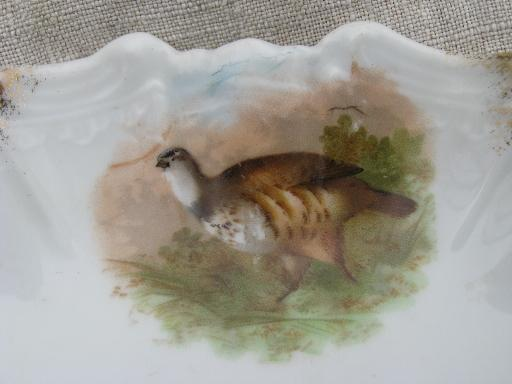old porcelain crescent plates bone dishes w/ game birds, grouse and ducks