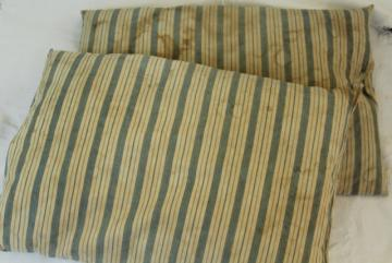 primitive grubby vintage cotton ticking feather pillows, old indigo blue striped cotton