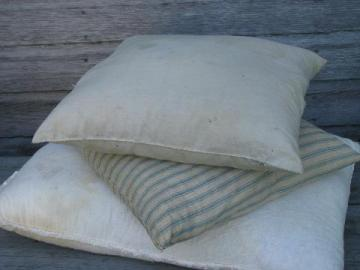 primitive old feather pillows, vintage blue stripe & feed sack fabric