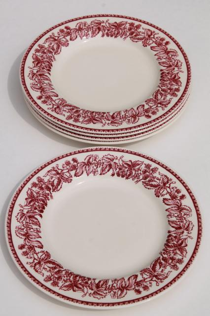 red transferware Wedgwood china Mayfair pattern Williams-Sonoma salad plates  sc 1 st  Laurel Leaf Farm & red transferware Wedgwood china Mayfair pattern Williams-Sonoma ...