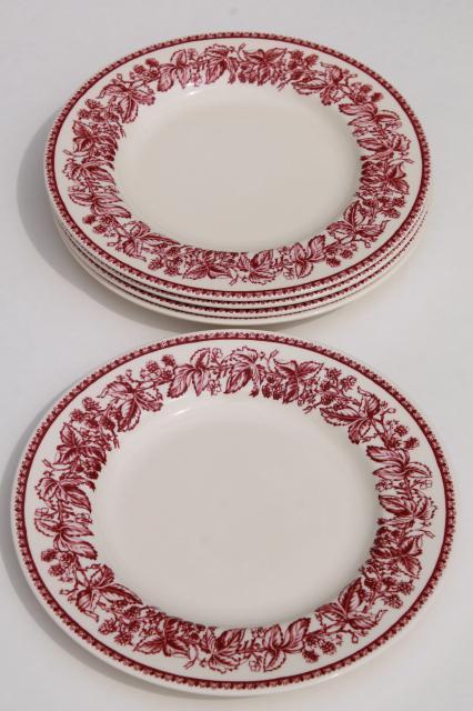 red transferware Wedgwood china Mayfair pattern Williams-Sonoma salad plates  sc 1 st  Laurel Leaf Farm & red transferware Wedgwood china Mayfair pattern Williams-Sonoma ...
