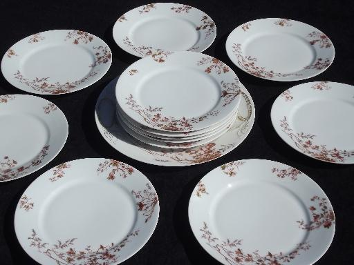 Russet Brown Flowers Antique Limoges France China 12