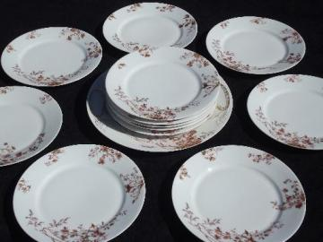 russet brown flowers antique Limoges - France china, 12 plates and platter