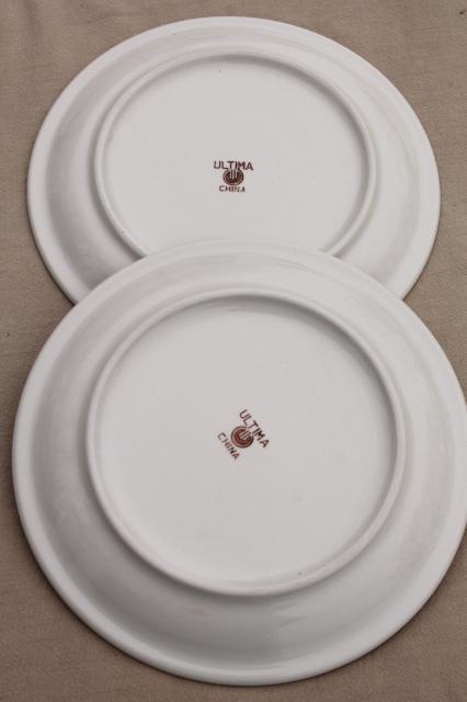 Rustic Heavy Ironstone Dinner Plates W Brown Brushstroke