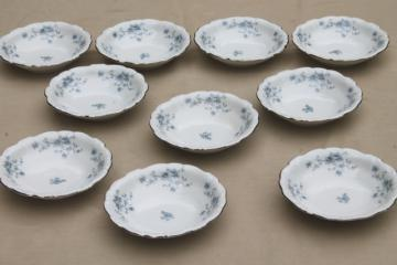 set of 10 Blue Garland china fruit dishes small bowls, vintage Bavaria mark Johann Haviland