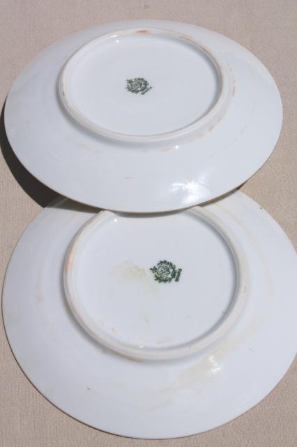 set of 12 antique Bavaria china plates w/ hand painted wild rose floral