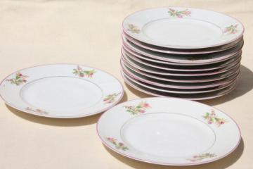 set of 12 antique vintage hand painted moss rose porcelain salad or luncheon plates