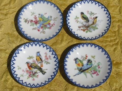 & set of miniature vintage china plates w/ birds cobalt blue border
