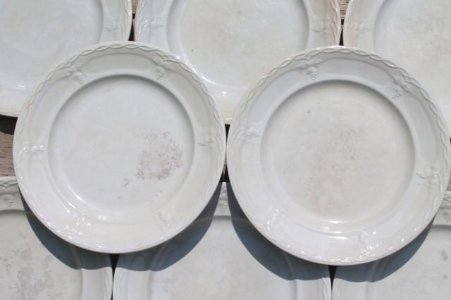 Shabby Antique 1800s Vintage Ironstone China Set Of 10 Dinner Plates Grape \u0026 Cable Pattern & Dinnerware Grapes Pattern u0026 Royal Doulton Vintage Grape Pattern ...