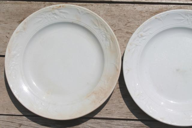 shabby antique 1800s vintage ironstone china set of 6 dinner plates poppies in the wheat pattern & shabby antique 1800s vintage ironstone china set of 6 dinner plates ...