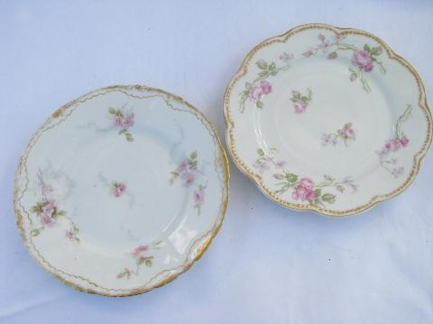shabby pink roses lot old antique vintage china plates assorted rose patterns & shabby pink roses lot old antique vintage china plates assorted ...