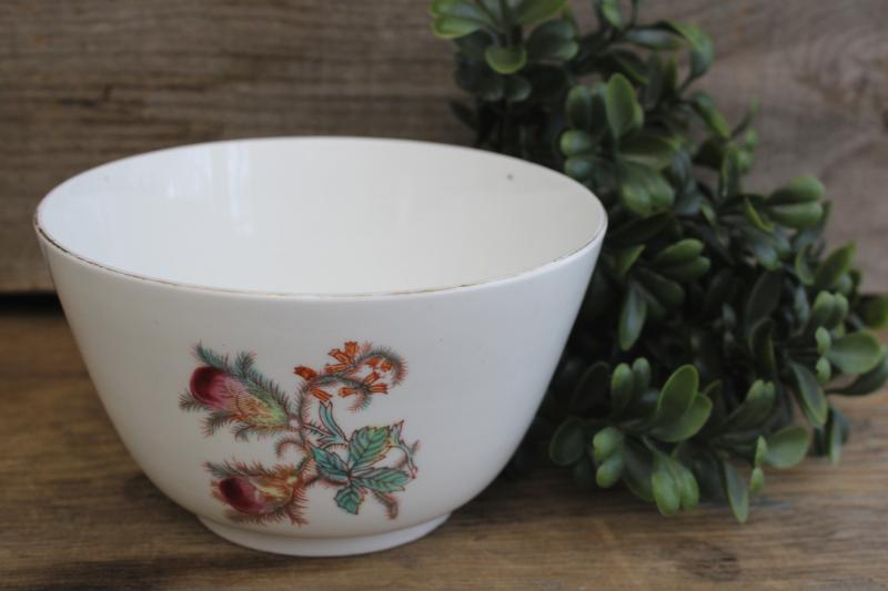 turn of the century vintage moss rose pattern cranberry bowl, antique china