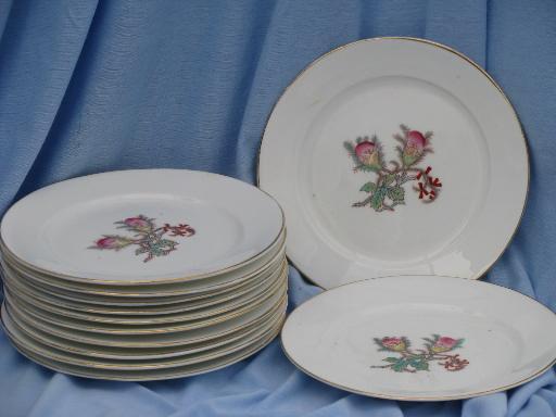 unmarked Haviland china moss rose center salad plates, antique set of 12