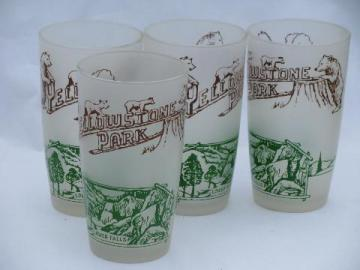 vintage 1950s Yellowstone souvenir glasses, 4 glass tumblers w/ bears