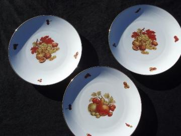 vintage Bareuther Bavaria fruit china, large plates Thanksgiving fall harvest