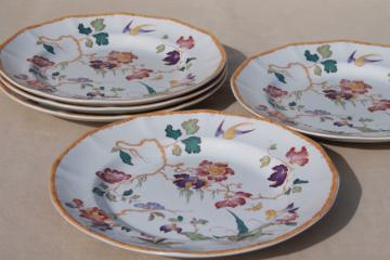 vintage Devon Rose Wedgwood china dinner plates, flowers w/ bird & bamboo