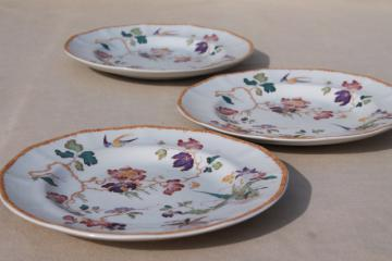 vintage Devon Rose Wedgwood china salad plates, flowers w/ bird & bamboo