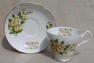 vintage English bone china tea cup & saucer for February birthday Primrose flower