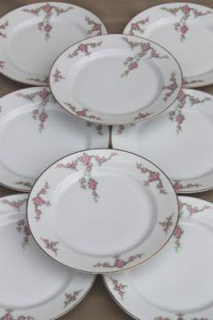 vintage Heinrich Bavaria H & C Rosalinda pink roses china luncheon plates set of 8