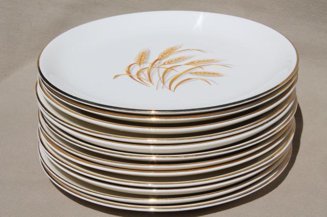 vintage Homer Laughlin golden wheat china gold wheat sheaf dinner plates Thanksgiving set for 12 & vintage Homer Laughlin golden wheat china gold wheat sheaf dinner ...