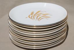 vintage Homer Laughlin golden wheat china, gold wheat sheaf dinner plates Thanksgiving set for 12