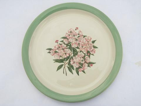 vintage Pennsylvania Railroad plate, Mountain Laurel Shenango china