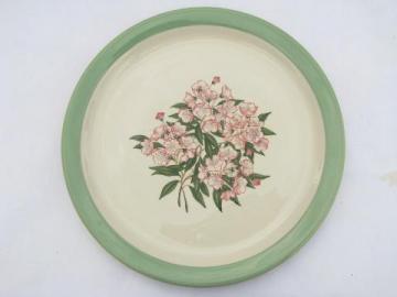 vintage Pennsylvania Railroad plate, Mountain Laurel Shenango china