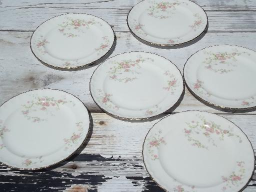 vintage Pope-Gosser china salad plates, pink floral princess pattern?