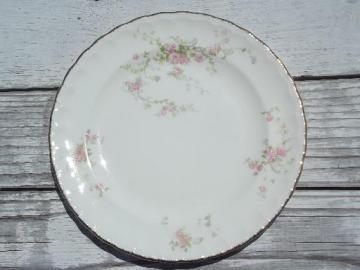 vintage Pope-Gosser china salad plates, pink floral princess pattern?