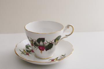 vintage Regency England bone china tea cup & saucer set, fuchsia plant flowers