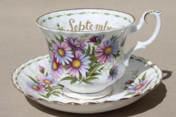 vintage Royal Albert china cup & saucer for September birthday, birth month flowers