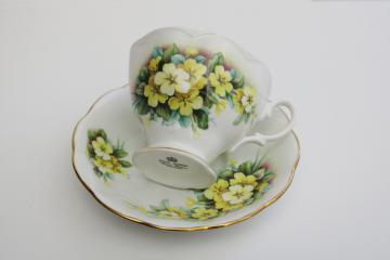 vintage Royal Albert yellow primroses tea cup & saucer, friendship series