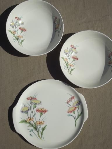 vintage Universal pottery dishes autumn asters floral Ballerina china for 8 & vintage Universal pottery dishes autumn asters floral Ballerina ...