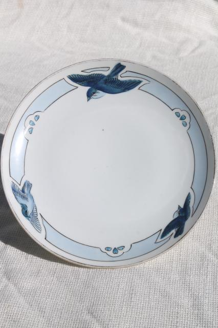 vintage bluebird china plate, hand painted Nippon porcelain w/ blue birds