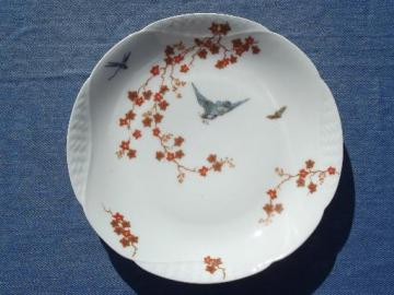 vintage bluebird china plate, old antique Haviland Limoges - France