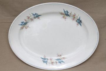 vintage bluebird china platter or tray, old antique National china blue bird pattern