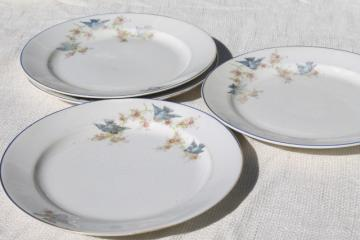 vintage bluebird of happiness plates, antique dishes w/ Carrollton china mark