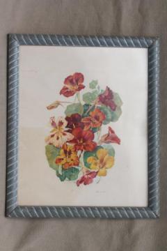 vintage botanical print, nasturtiums floral print framed in old wood frame