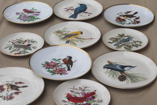 vintage collector\u0027s plates w/ song birds collection of assorted china bird plates & vintage collector\u0027s plates w/ song birds collection of assorted ...