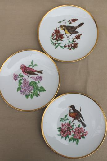 Vintage Collector S Plates W Song Birds Collection Of