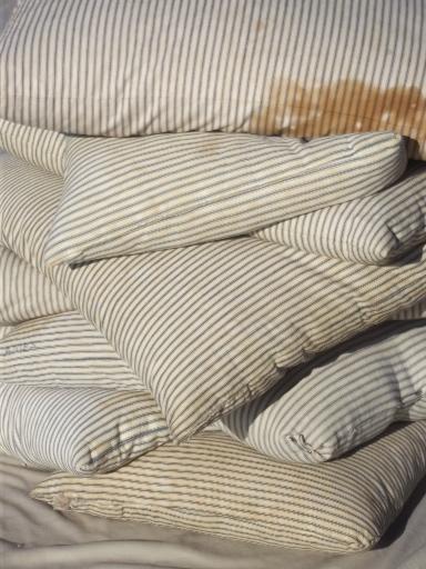 Vintage Farmhouse Feather Pillows W Antique Indigo