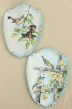 vintage hand painted china wall plaques, oriole and gold crest birds, garden songbirds